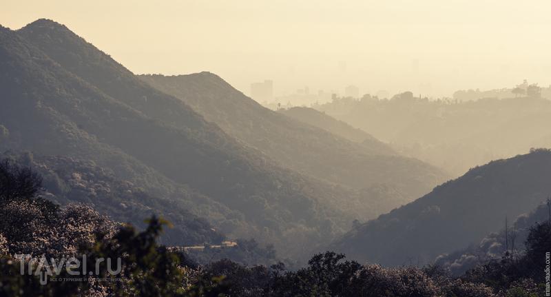 Как покорить Голливуд за 2 часа / Фото из США