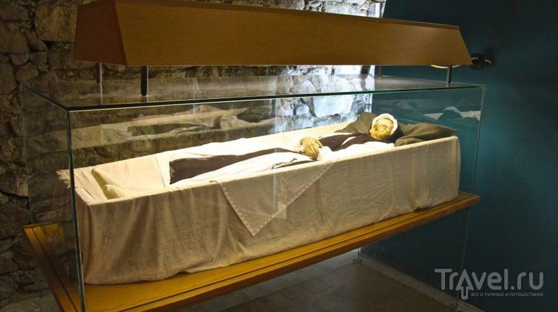 """Поездка к """"Вацским мумиям"""" / Венгрия"""