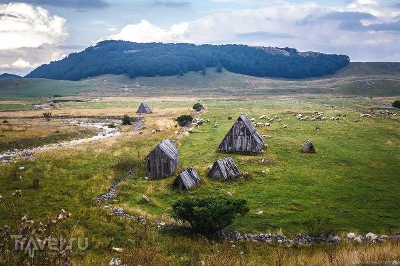 Затерянный мир в сердце Черногории / Фото из Черногории