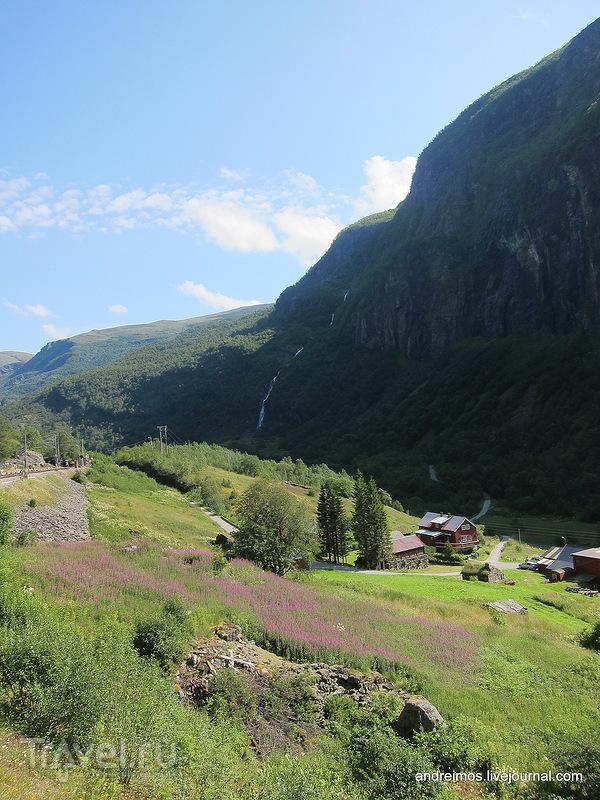 Флом (Норвегия) / Фото из Норвегии