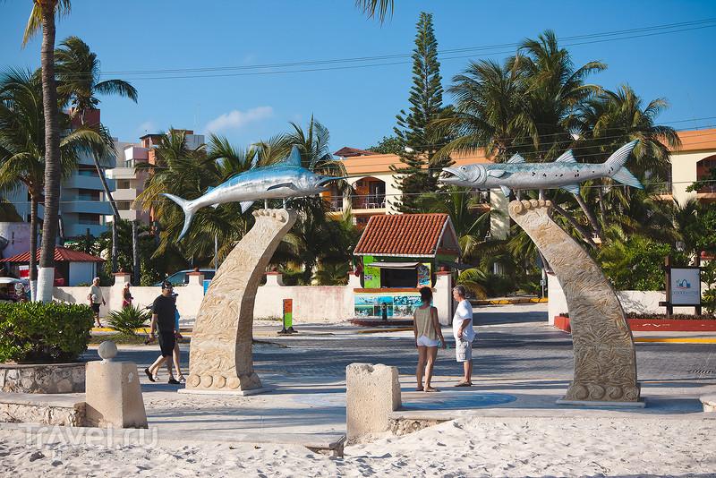 Исла Контой и Исла Мухерес (Карибское побережье Мексики) / Фото из Мексики