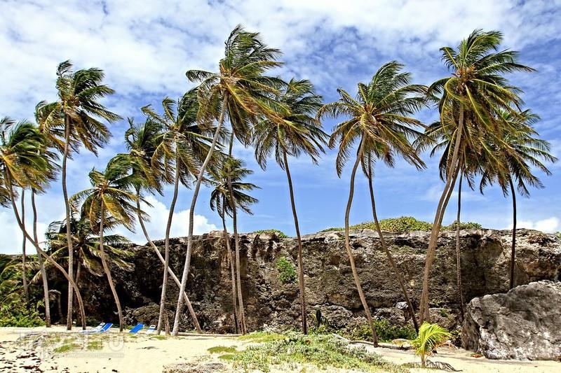 Барбадос: пляж Боттом Бей! / Барбадос