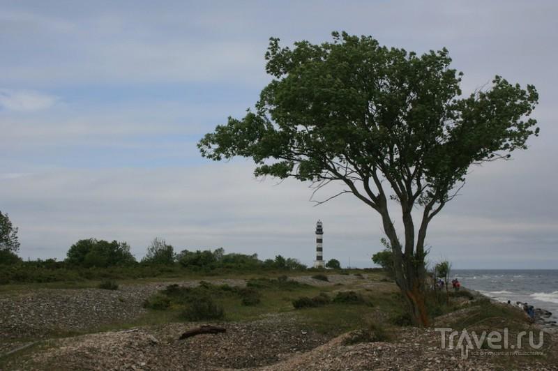 Маленький остров Осмуссаар / Эстония