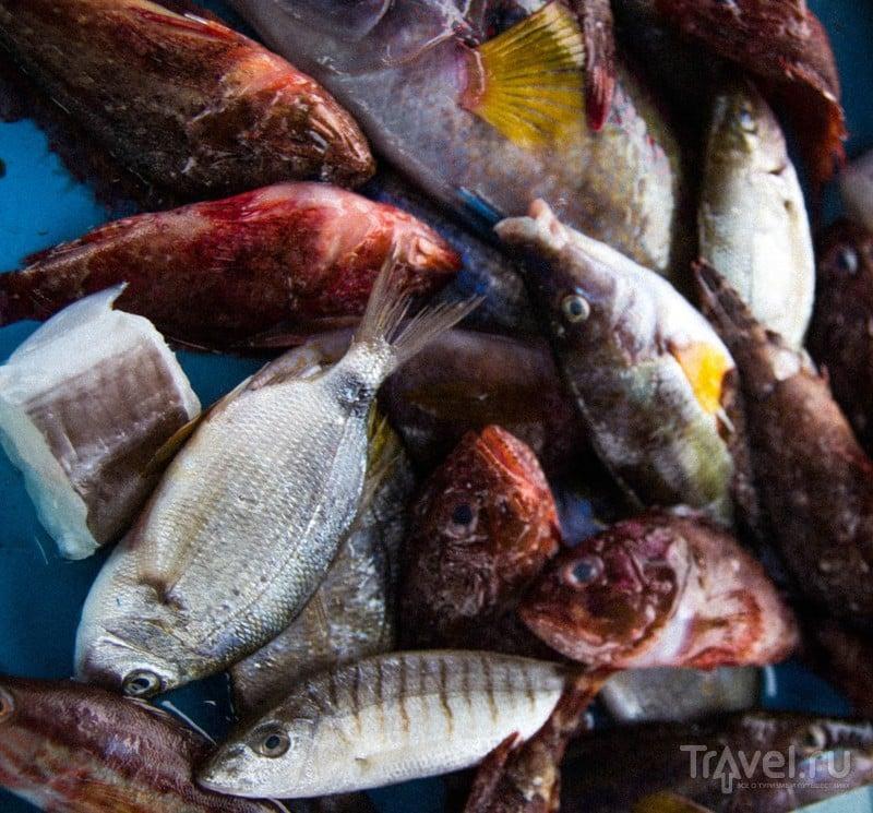 Рыбный рынок в Марселе / Франция
