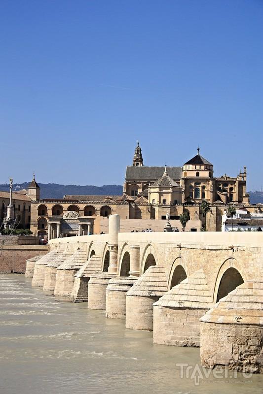 Андалусские сказки. Кордова / Фото из Испании