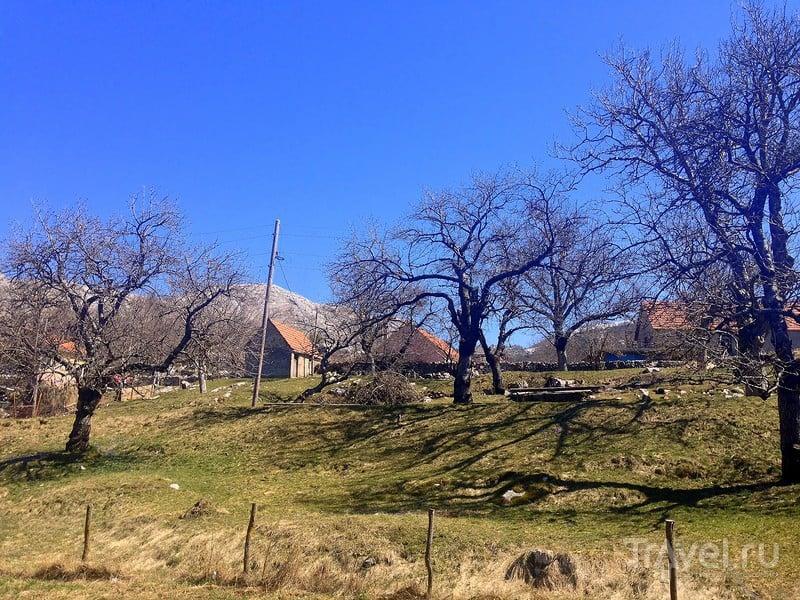 Черногория весной: как пробуждается природа / Фото из Черногории