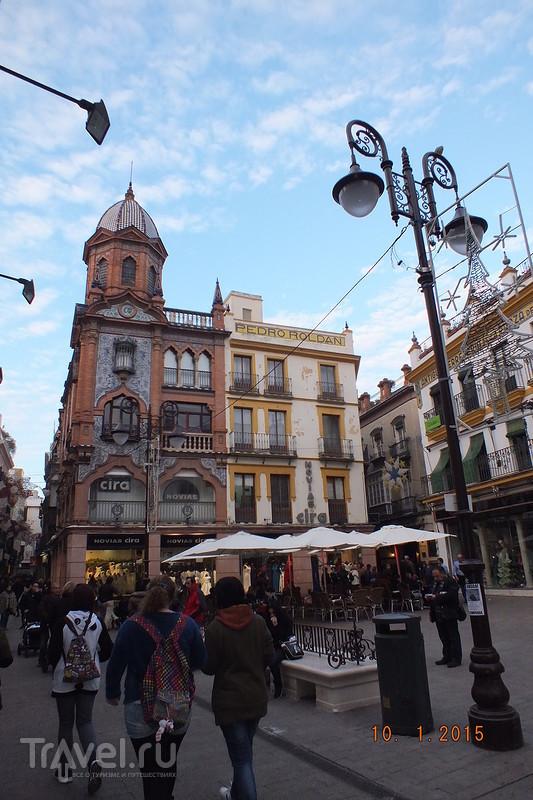 Испания в январе. Севилья / Испания