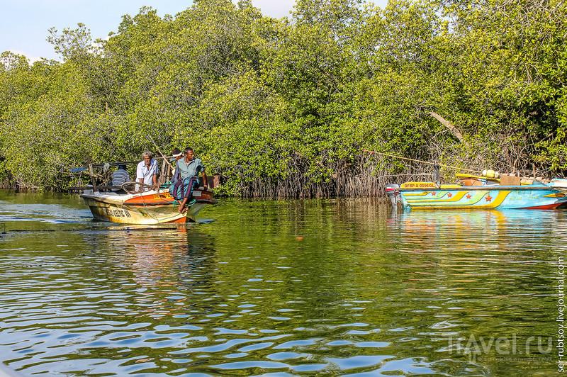 Буддистский храм на острове в озере Мадуганга / Шри-Ланка