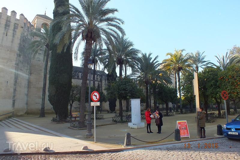 Испания в январе. Медина Асахара / Испания
