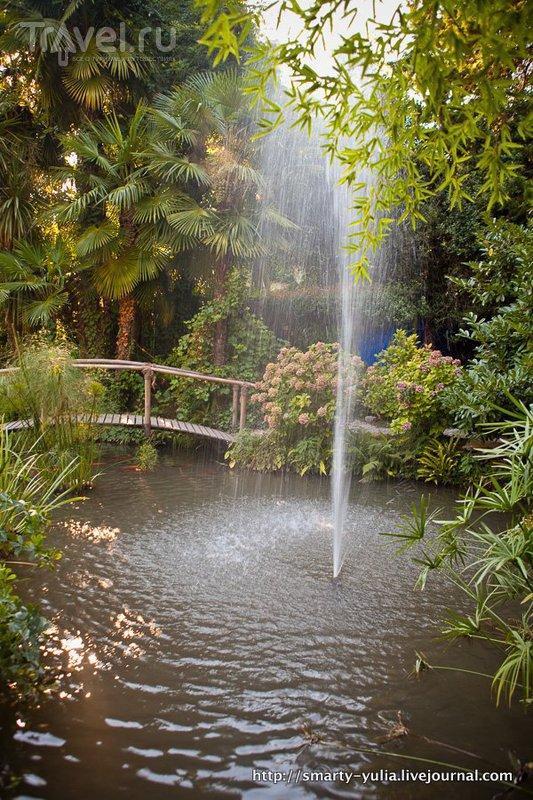 Ботанический сад Андре Хеллера на озере Гарда / Фото из Италии