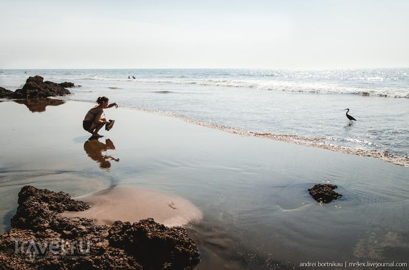 Голыми ножками по теплому песочку. Ашвем и Мандрем, Гоа / Фото из Индии