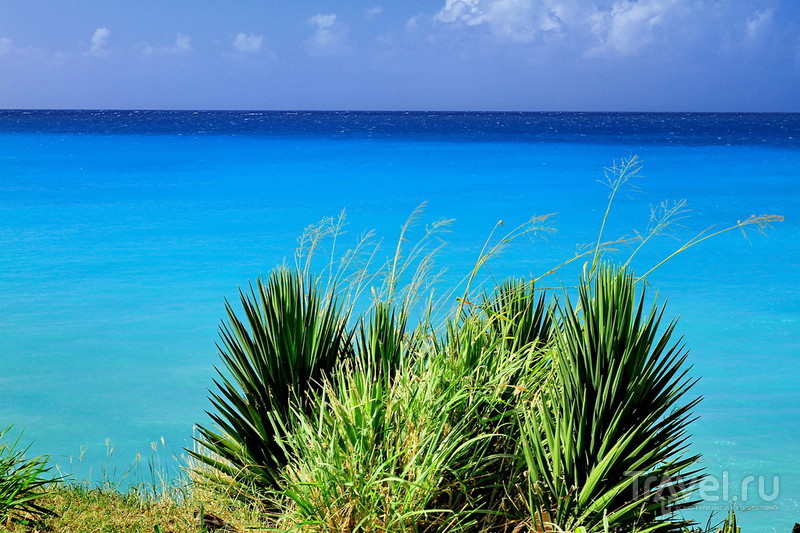 Барбадос: пляжные зарисовки / Барбадос