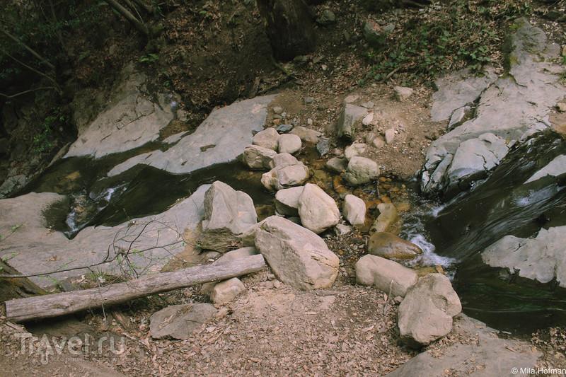 Парк Uvas Canyon / Фото из США
