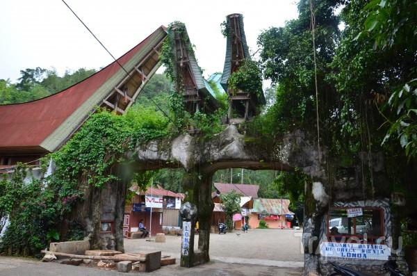 Тана Тораджа. Сулавеси, Индонезия (фрагмент дневника) / Индонезия