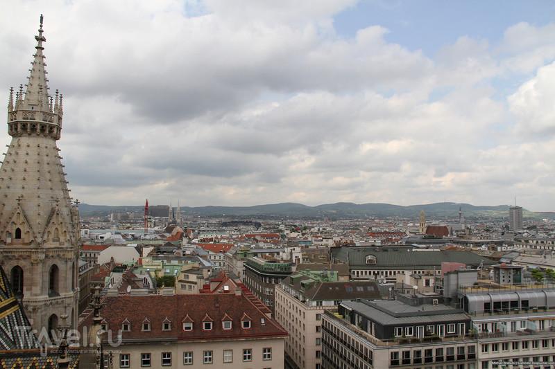 Под ногами Вена / Австрия