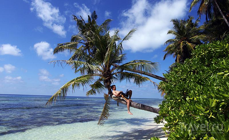Теперь поехать на Мальдивы дешевле Египта! / Мальдивы
