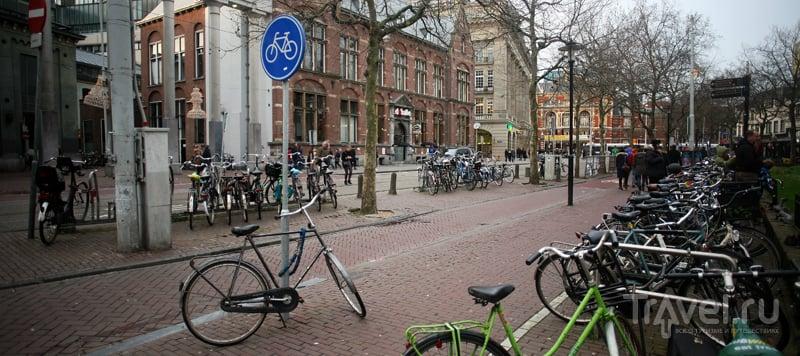 Город брошенных велосипедов / Нидерланды