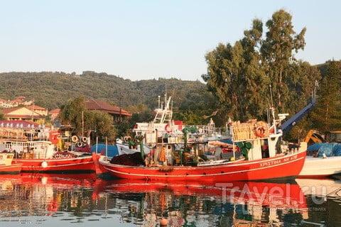 Рыба греческая. Реально свежая / Греция