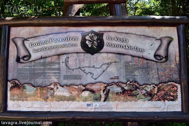 Что делает подводная лодка в лесах Мазурии или чем могут заинтересовать бункеры Восточной Пруссии / Польша