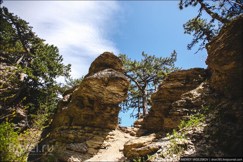 Таракташская тропа - вниз по Ай-Петри / Фото из России