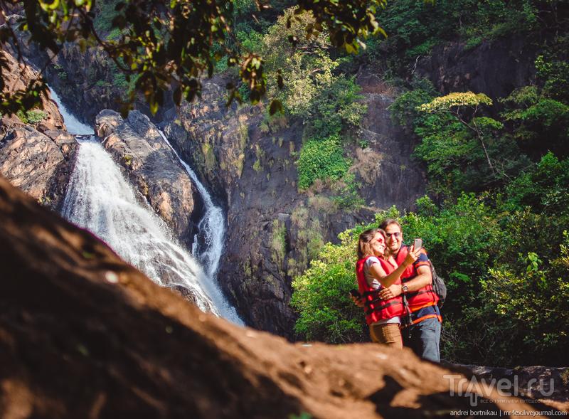 Водопад диких обезьян / Индия