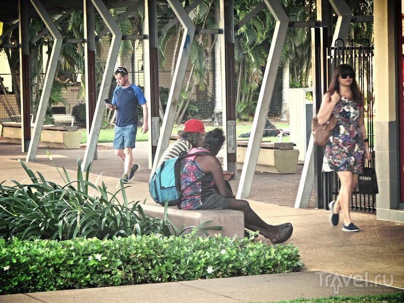 """Дарвин. Как выглядит """"захолустье"""" Австралии / Фото из Австралии"""