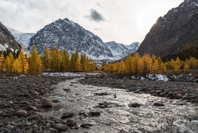 Краски осеннего Алтая / Фото из России