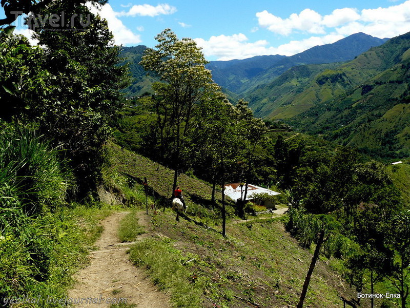 Колумбия - Con mucho gusto! Верхом к пирамиде и подземельям Сан Франсиско / Фото из Колумбии