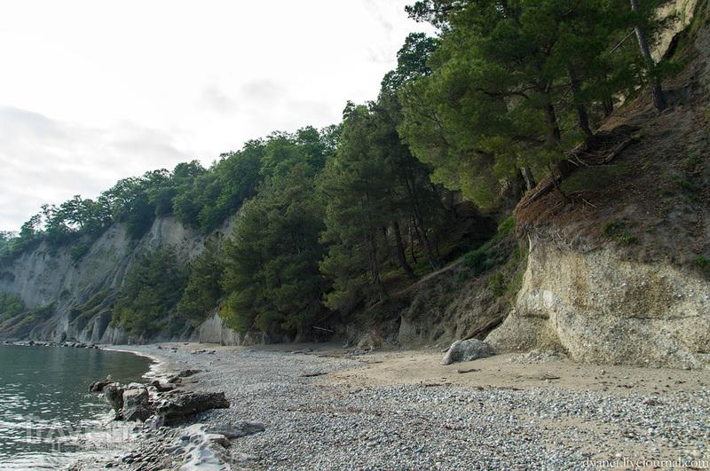 Об удивительной мандариновой стране / Фото из Абхазии