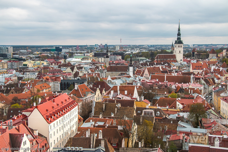 Вид на Таллин со смотровой площадки церкви Олевисте / Фото из Эстонии