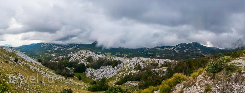 Сказка про извилистый серпантин и короля Черногории / Фото из Черногории
