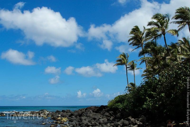 Алоха! Гавайские острова. Оаху. Гонолулу
