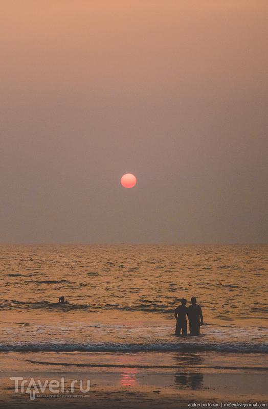 Баньян. Рубрика: Что еще посетить в Гоа / Индия