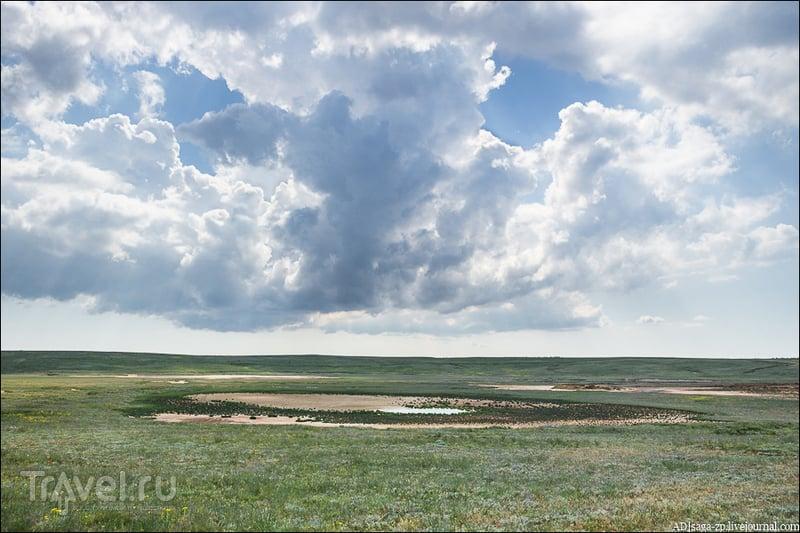 Красота степи / Фото из России