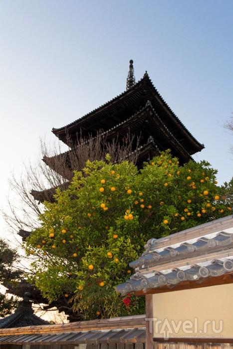Киото: Первое знакомство / Фото из Японии