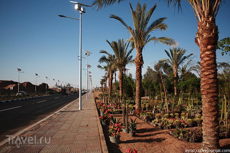 Особенности самостоятельного передвижения по Шарм-эль-Шейху / Египет