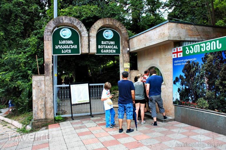 Батумский ботанический сад / Грузия