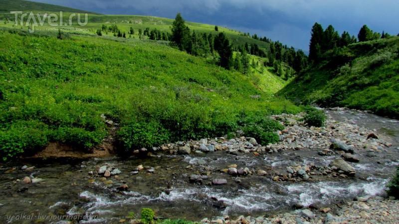 По Горному Алтаю на конях. Муехта - Аккаинский перевал - урочище Аярык / Россия