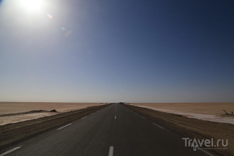Дорога к озеру Шотт-Эль-Джерид  / Фото из Туниса
