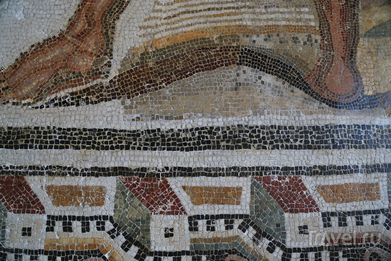 Музей Бардо  / Фото из Туниса