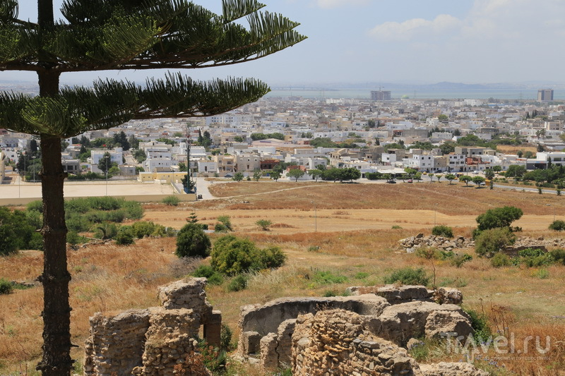 Развалины Карфагена / Фото из Туниса