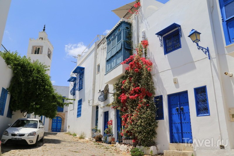 Сиди-Бу-Саид  / Фото из Туниса
