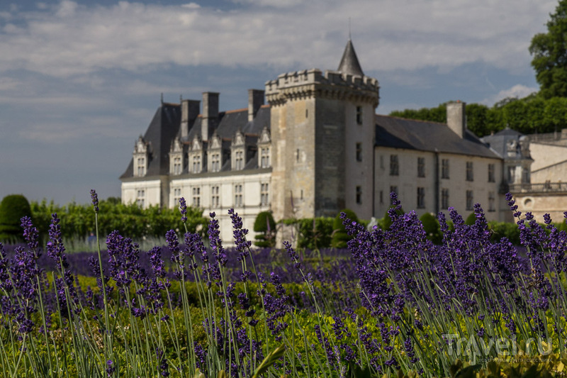 Замок и сады Вилландри / Франция