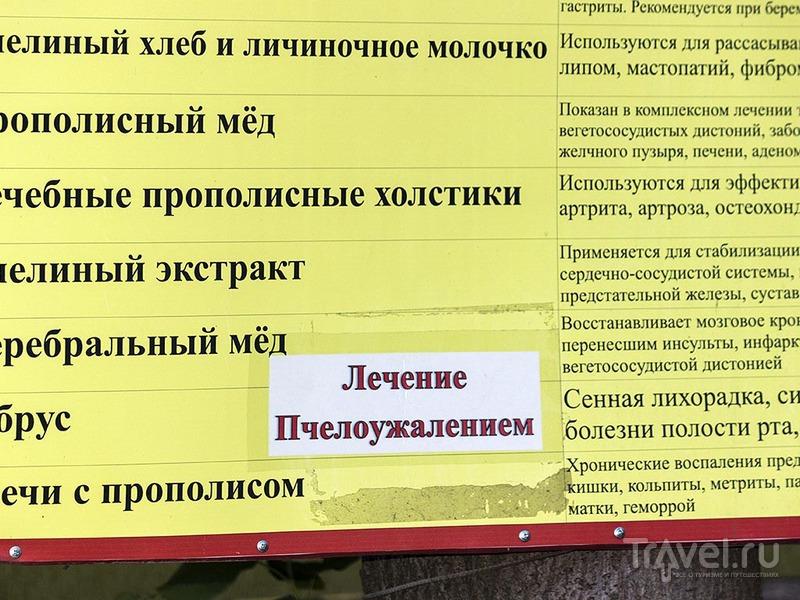 Волга. Тольятти / Россия