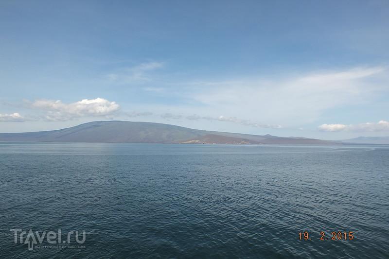 Галапагосы. Остров Исабела / Эквадор