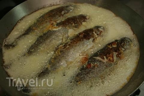Сербский каймак. На закуску, в супе, с рыбой и мясом / Сербия