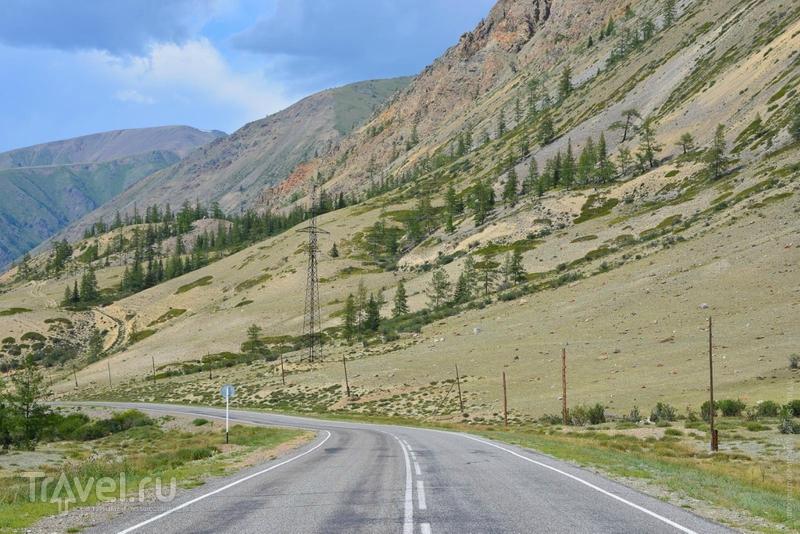 О, эта благословенная алтайская земля! / Фото из России