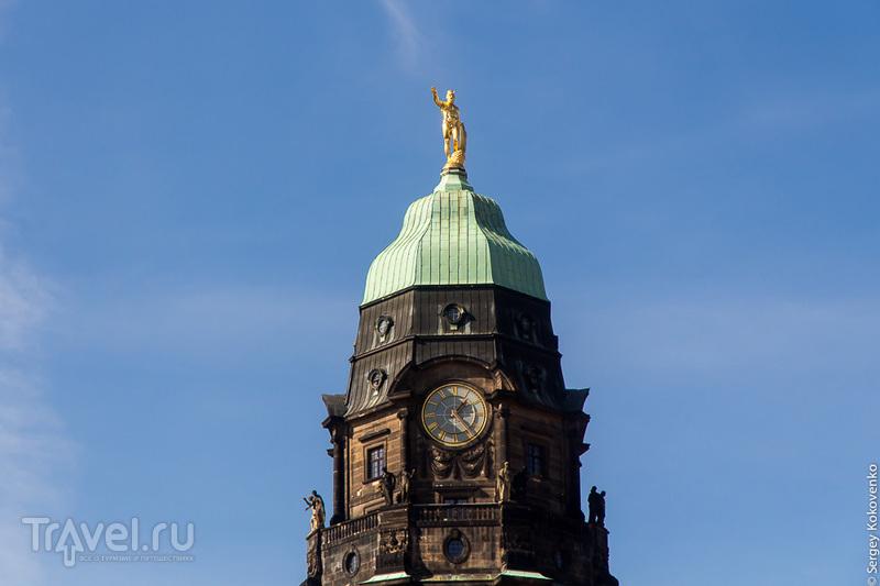 Дрезден с высоты колокольни Фрауэнкирхе, прогулка по историческому пригороду / Фото из Германии