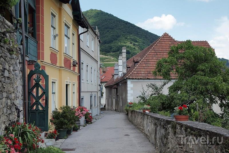 Скромное обаяние австрийской провинции, долина Вахау / Фото из Австрии