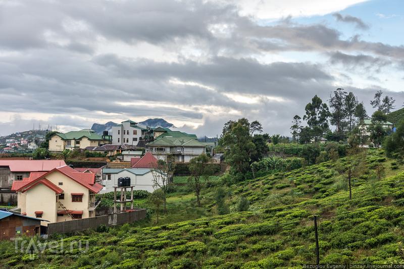 Шри-Ланка. Нувара-Элия / Фото со Шри-Ланки